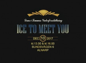 ice-to-meet-you-vinterforestallning